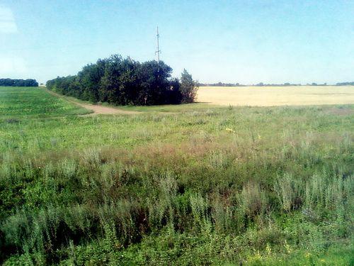 Ukrainian Steppes