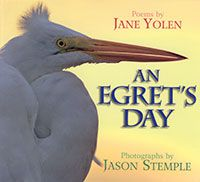 An Egret's Day poetry book by Jane Yolen