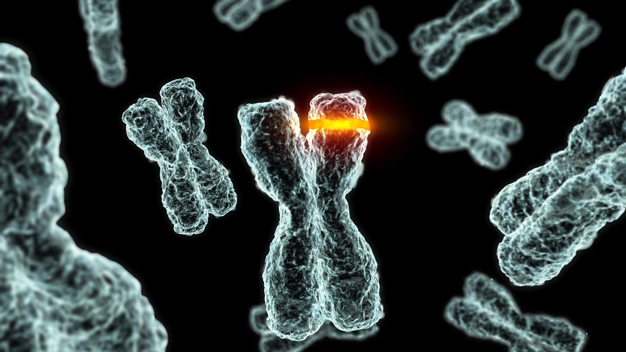 How Are Diseases Inherited Genetic Mutations Explained