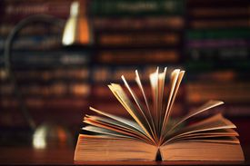 Get to know the 17 major sociology studies and books you should know here.