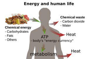 Energy and Thermodynamics