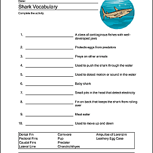 Shark Vocabulary Sheet