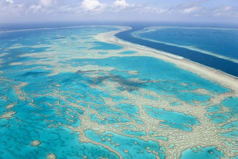 Great Barrier Reef in the Pacific Ocean