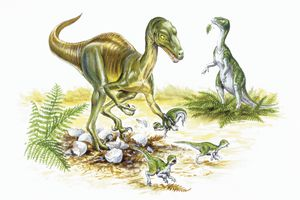 Illustration of Troodon catching young dinosaurs from nest.