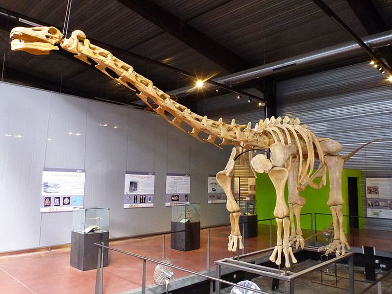 How Big Is That Titanosaur?