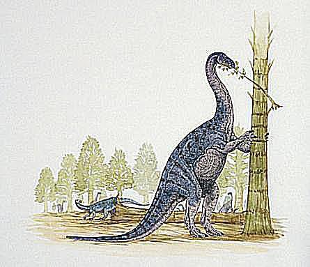 euskelosaurus