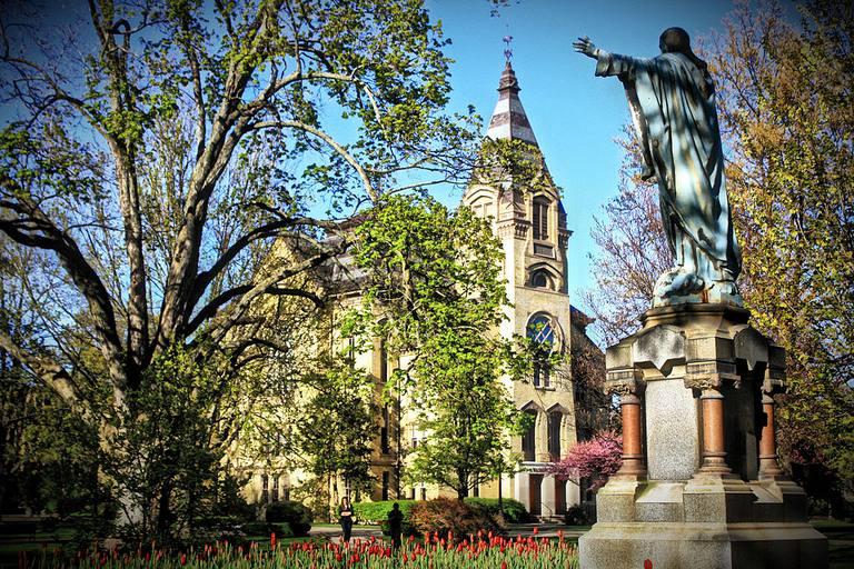 Notre-Dame-Michael-Fernandes.JPG