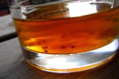 Make a Vinegar Trap to Get Rid of Fruit Flies
