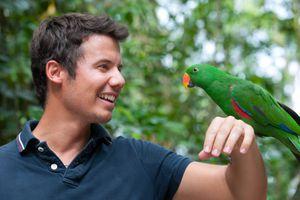 Man holding a colorful Parrot (XXXL)