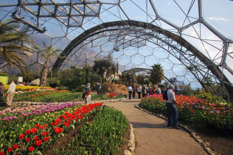 path and garden beneath a framework of plastic sheathing