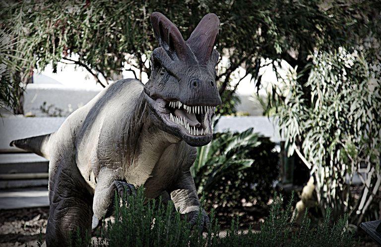 entre-dinosaurios.jpg