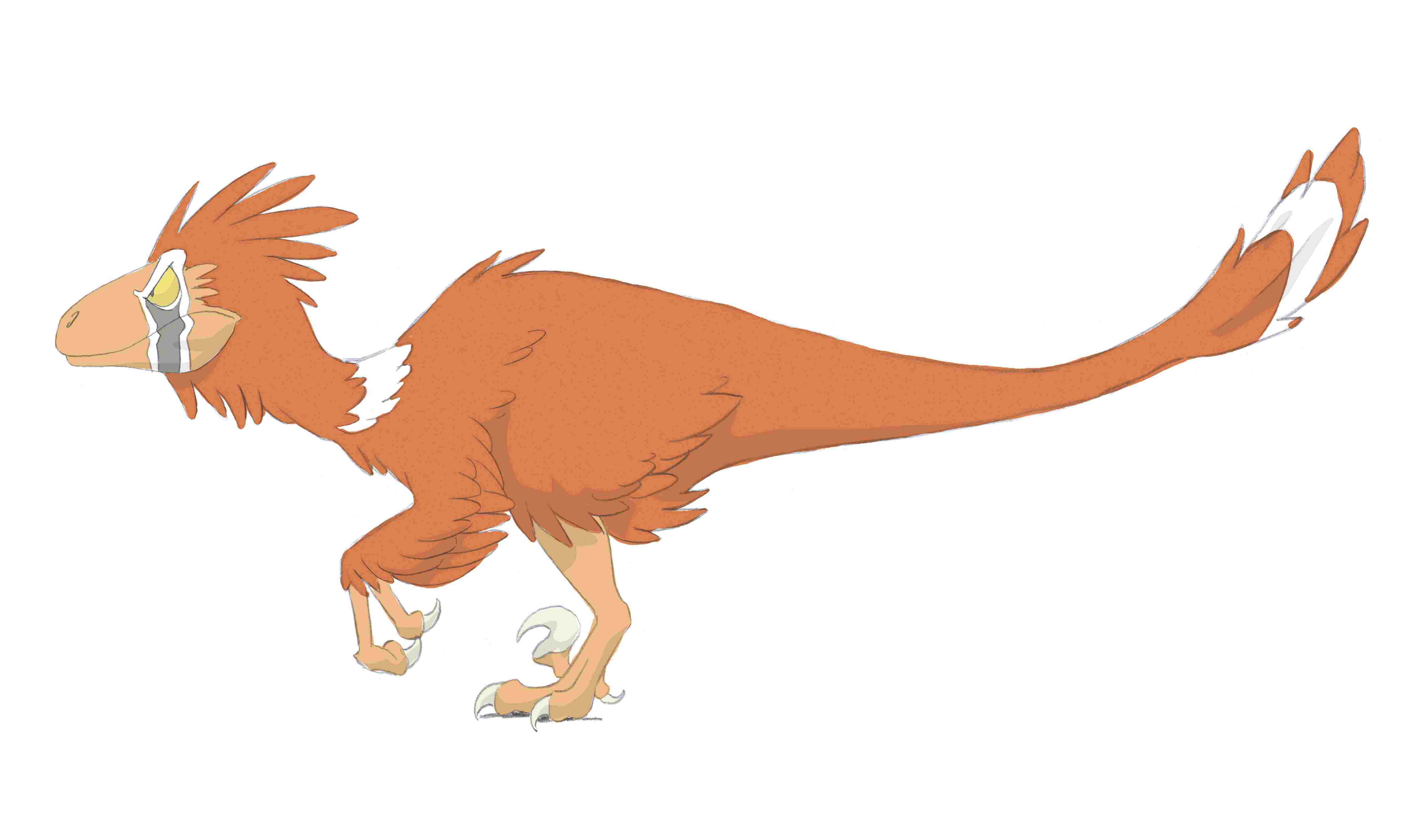 Deinonychus with fethers