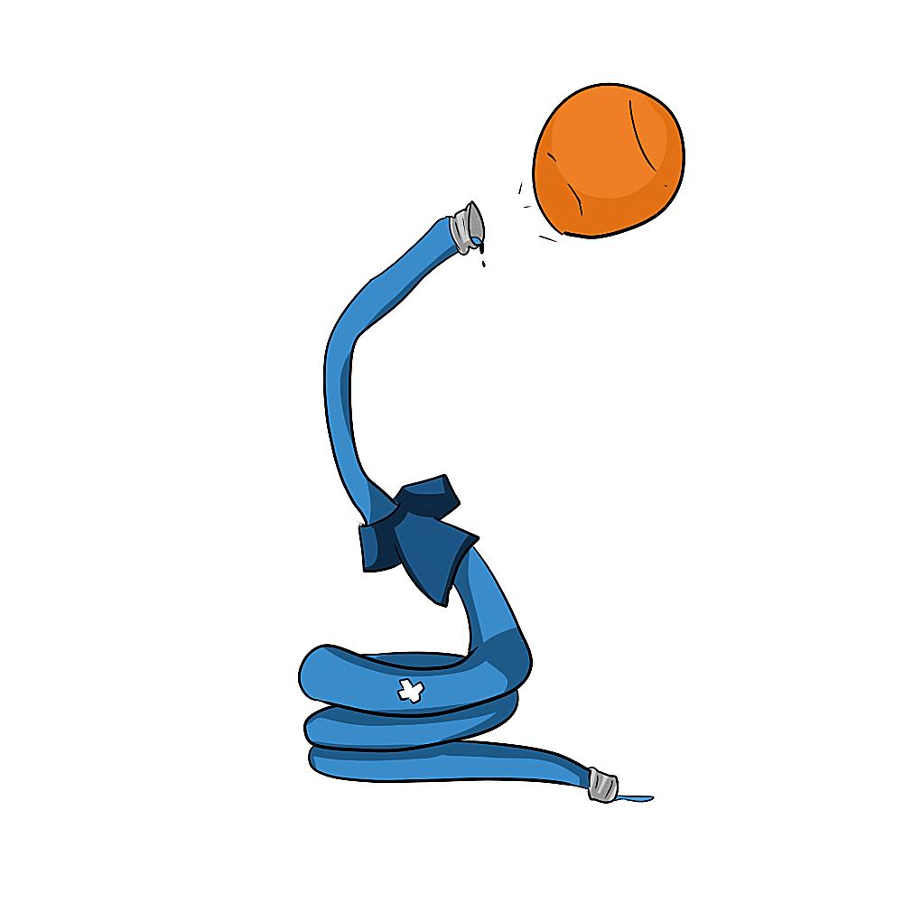 Presbyterian Blue Hose