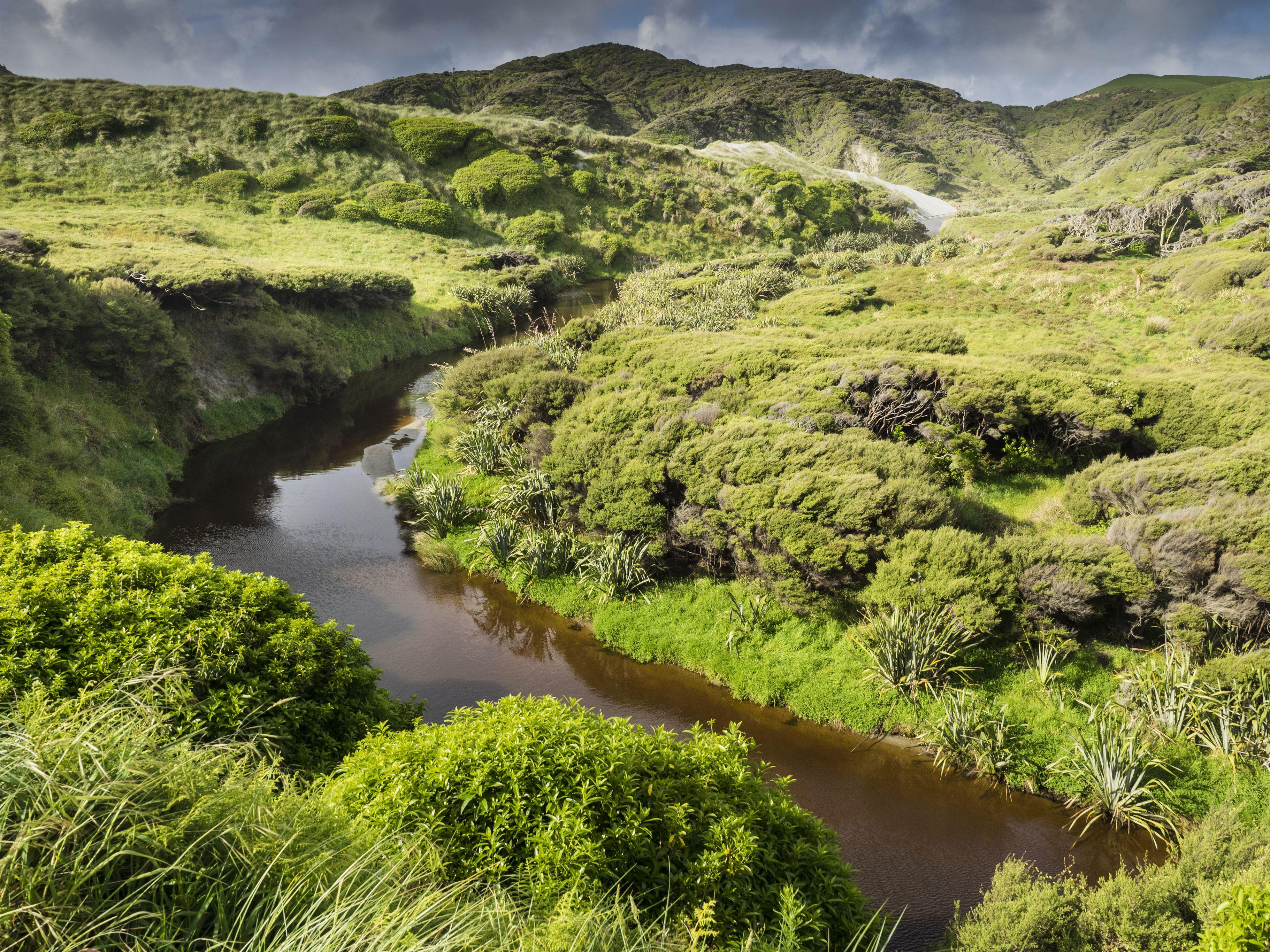 Wharariki Stream behind Wharariki Beach, Puponga, New Zealand.