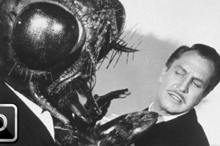 The Fly attacking Vincent Price 1958