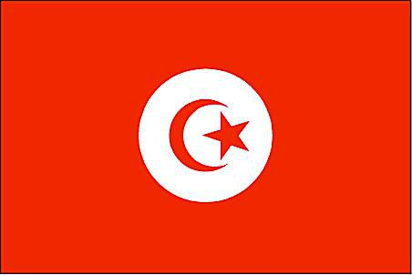 Flags Of Muslim Countries With A Crescent Moon