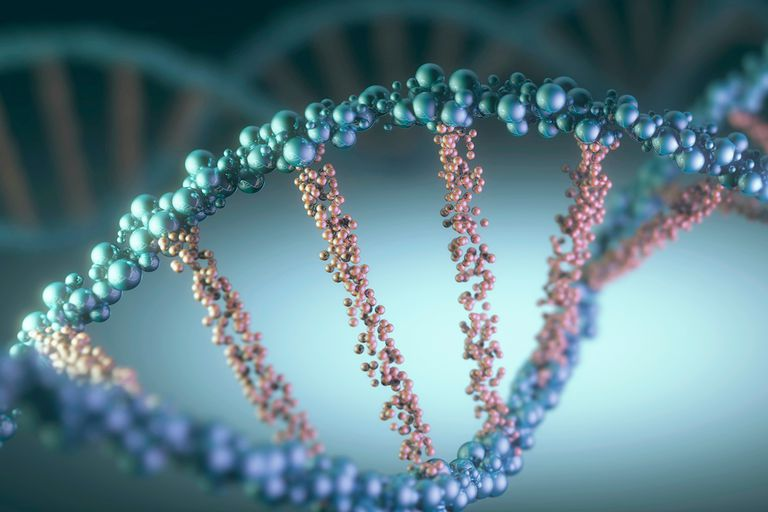 10 Interesting Facts About DNA