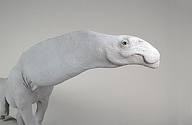 sulaimanisaurus