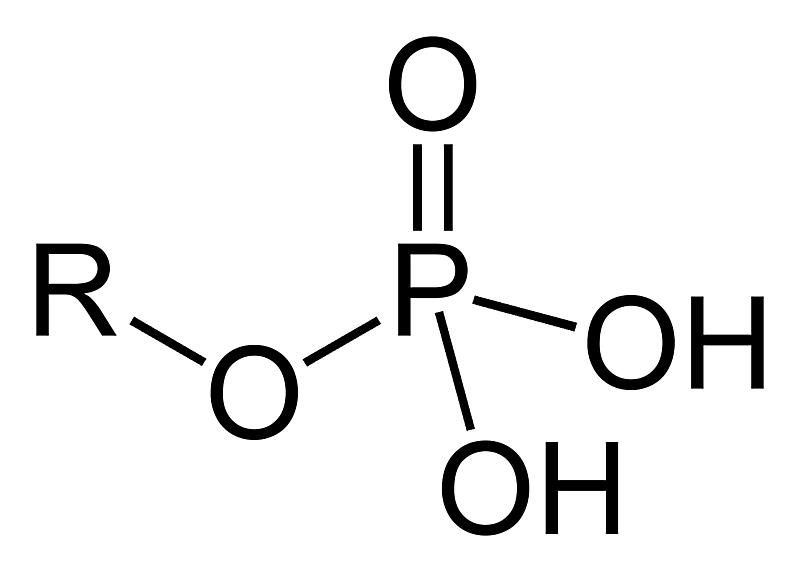 This is the two-dimensional structure of the phosphate functional group.