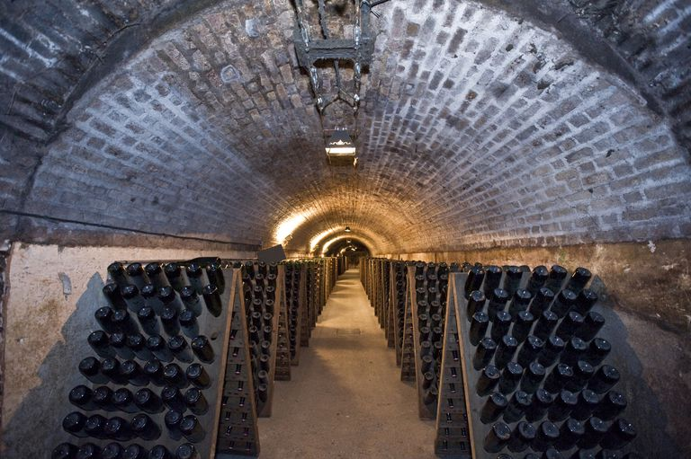 Tunnel Of Champagne
