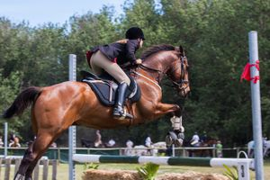 Rider and horse jumping in competition.