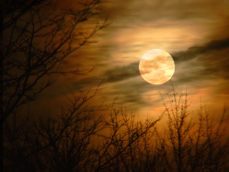 Full Moon Incense