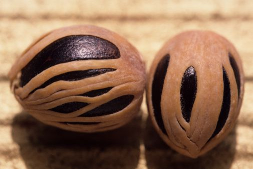 A whole nutmeg nut with the lacy mace covering