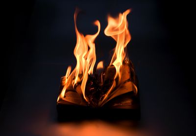 Fahrenheit 451 Themes and Literary Devices
