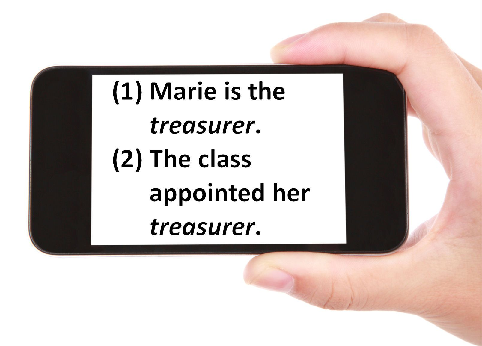 Practice Identifying Subject and Object Complements