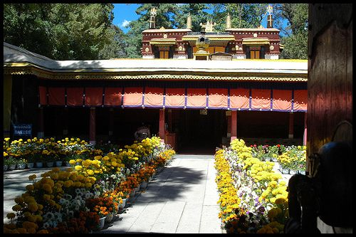 Norbulingka was first built in the 1780s as a retreat for the Dalai Lamas.