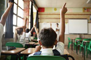 Children raise their right arms