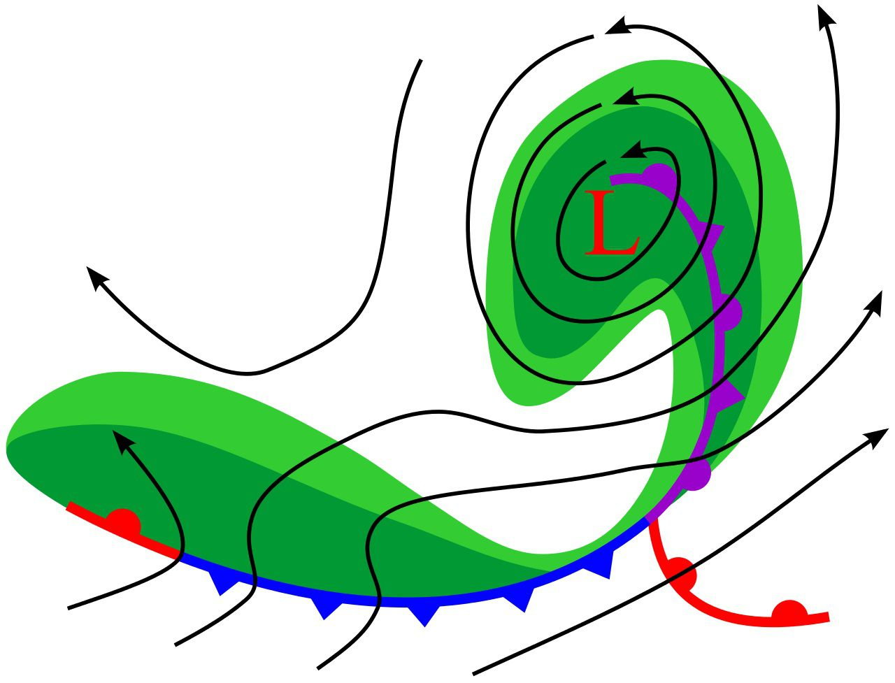 Diagram showing an occluded front.