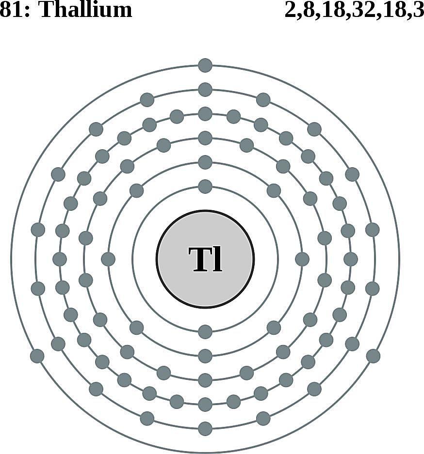 This diagram of a thallium atom shows the electron shell.