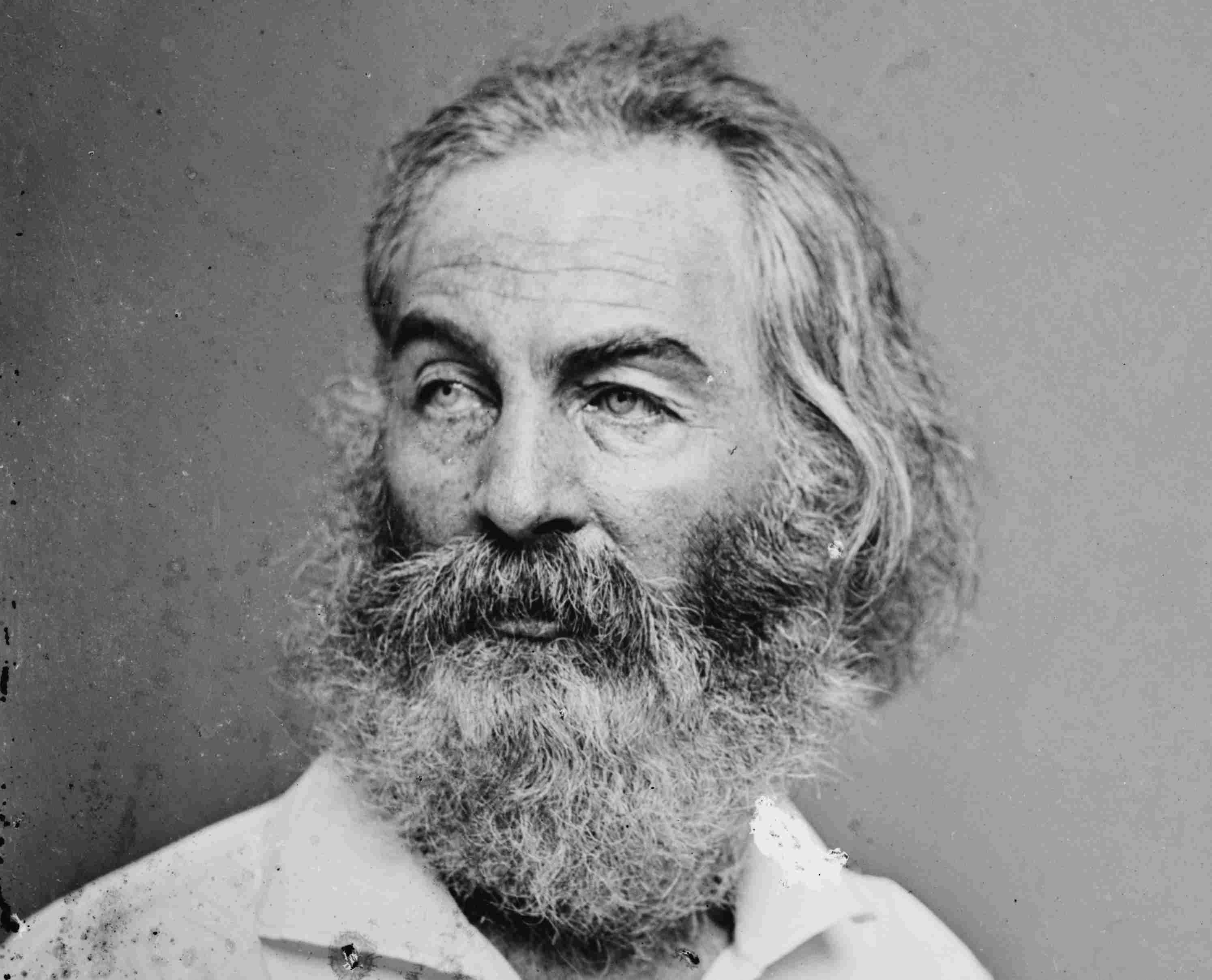 Civil War era photograph of Walt Whitman.
