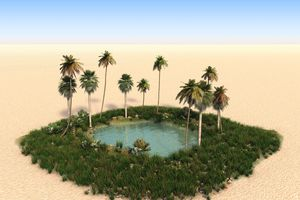 An oasis with palm trees in the middle of a desert