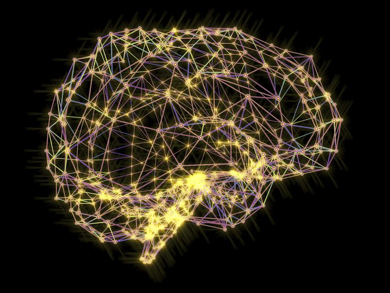 Brain, neural network