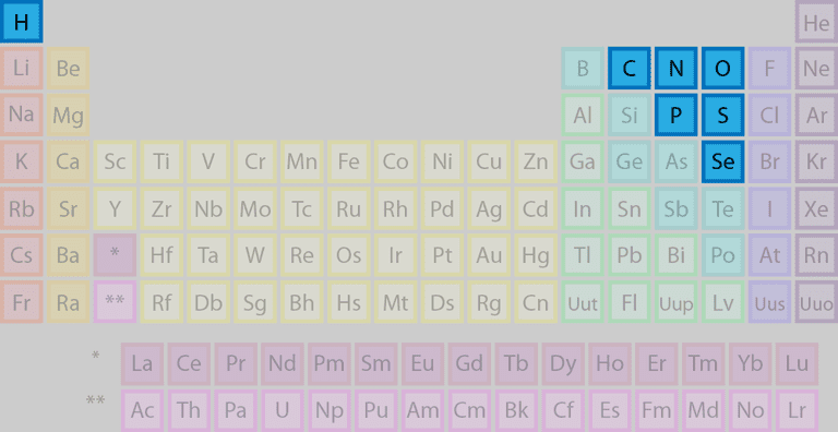 The highlighted elements of this periodic table belong to the nonmetal element group. However, halogens and noble gases are also types of nonmetals.