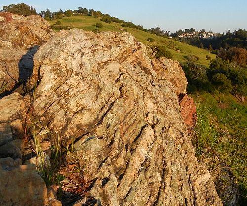 Metachert outcrop on a sunny day.