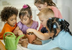 Young children gathered around a potted plant.
