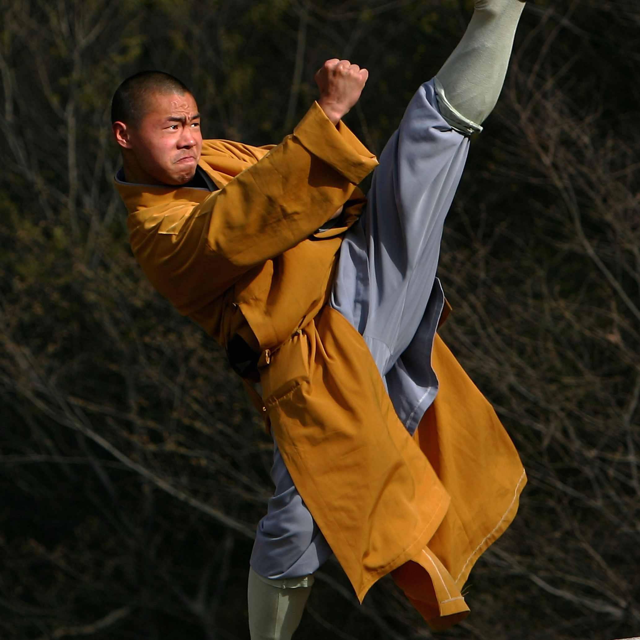 Картинка монах шаолинь