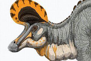 lambeosaurus drawing