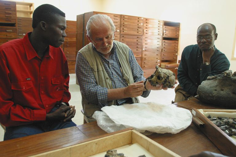 Discovery of the Skull of the Earliest Member of the Human Family