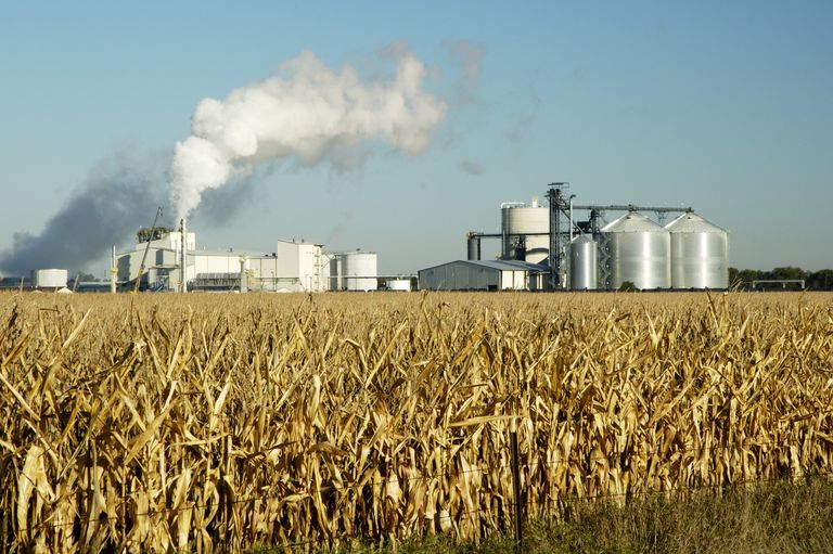 Farm producing ethanol with field and machinery.