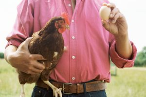 Man holding up a chicken and an egg