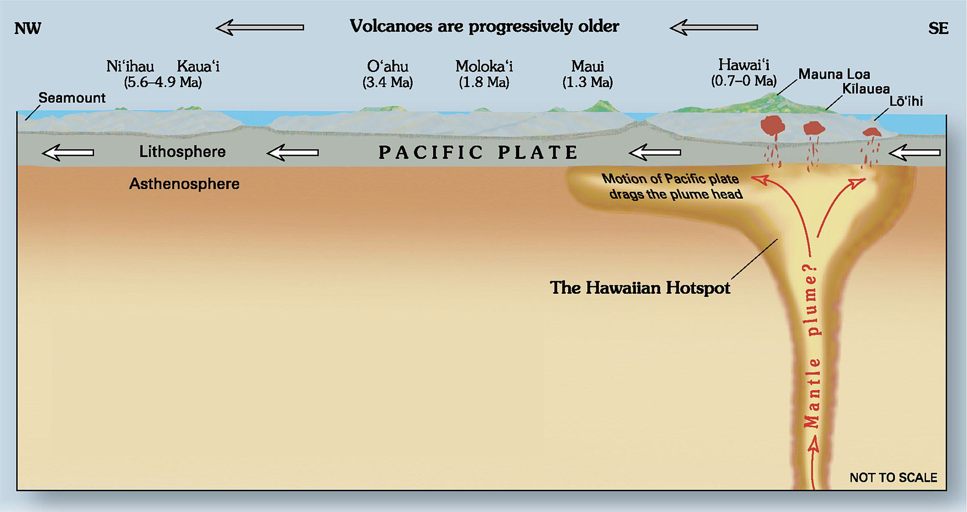 The Hawaiian islands are the result of a hot spot that created each island as the Pacific plate moved. Similar hotspots exist around the planet.