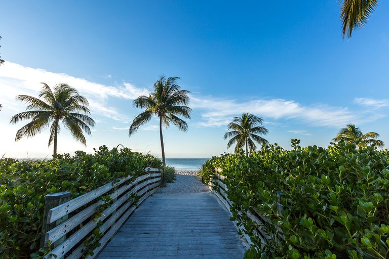 Scenery from the Keys, Florida