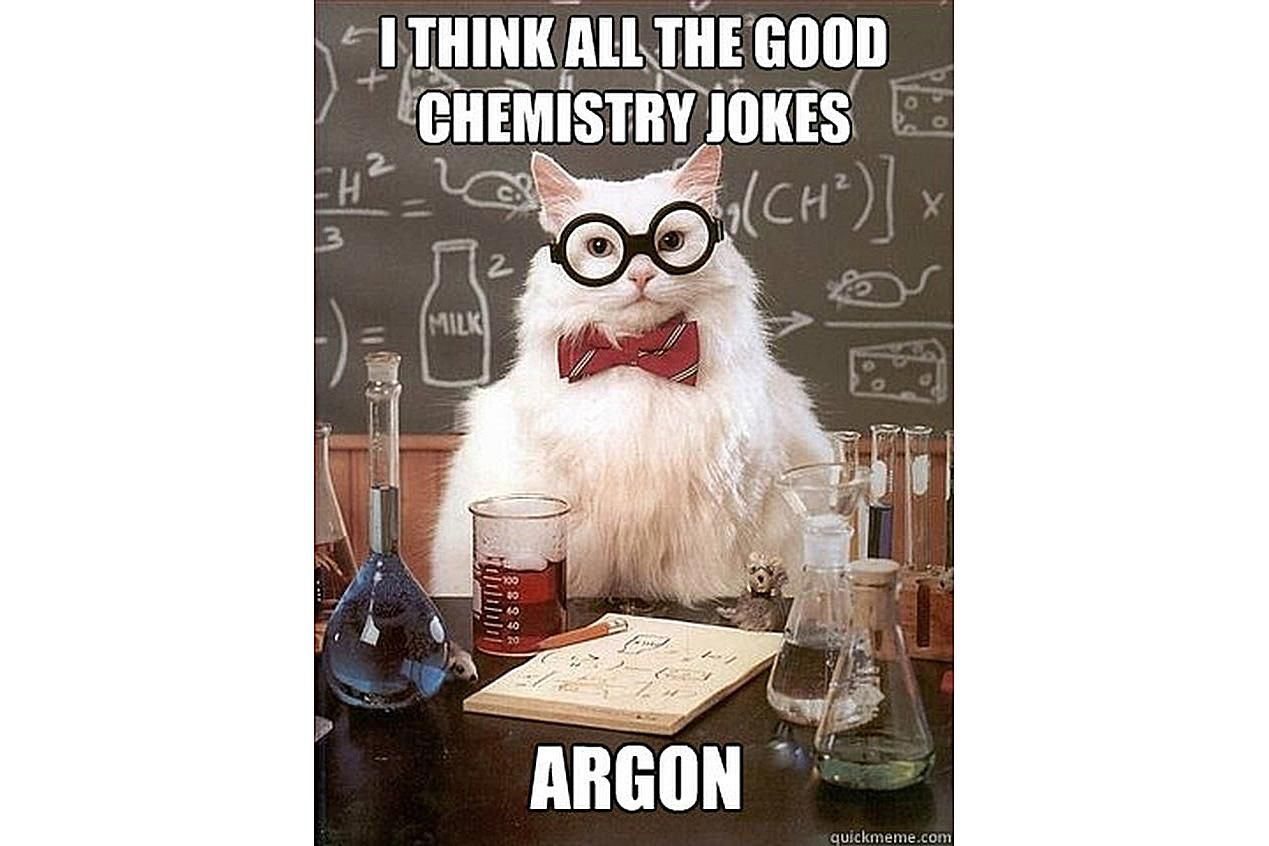 Chemistry Cat is worried there are no more chemistry jokes.