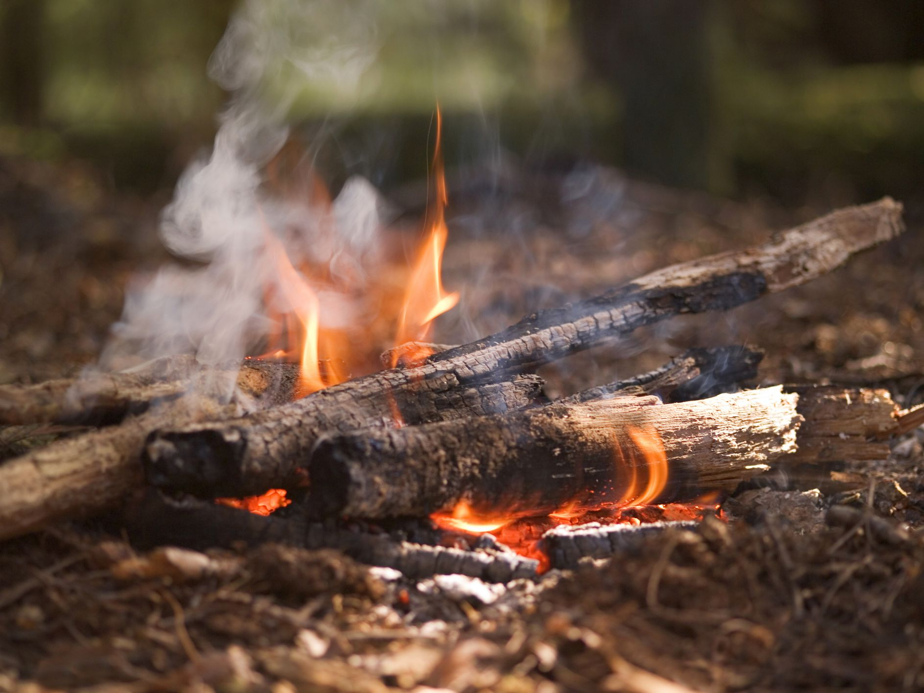 Is Pollution From Campfires a Real Problem?