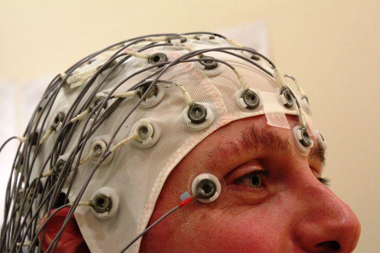 Studying the Brain