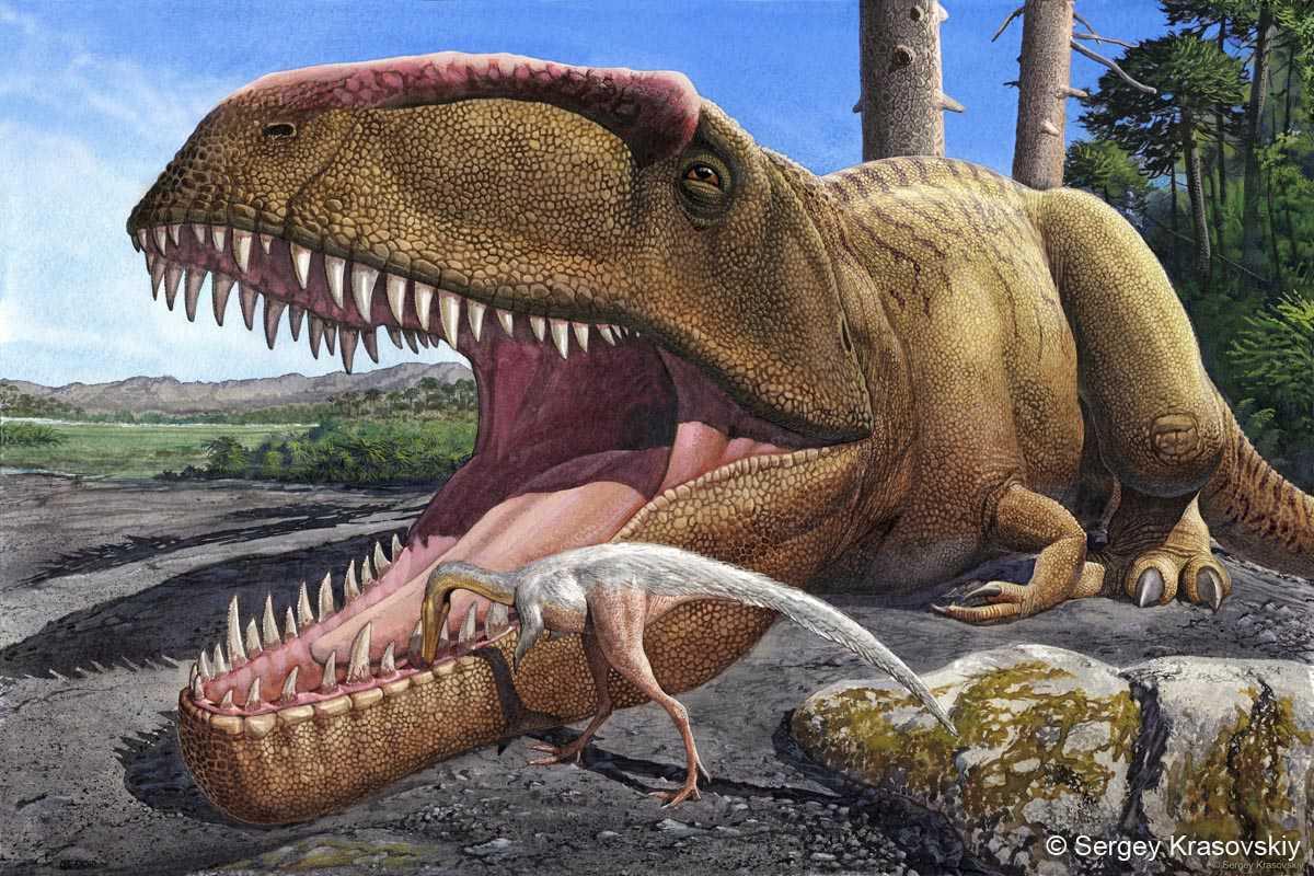giganotosaurus getting teeth cleaned by smaller animal